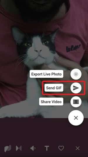 motion stills send gif min DzTechs - كيفية نشر الصور المباشرة كقصة على Instagram من iPhone