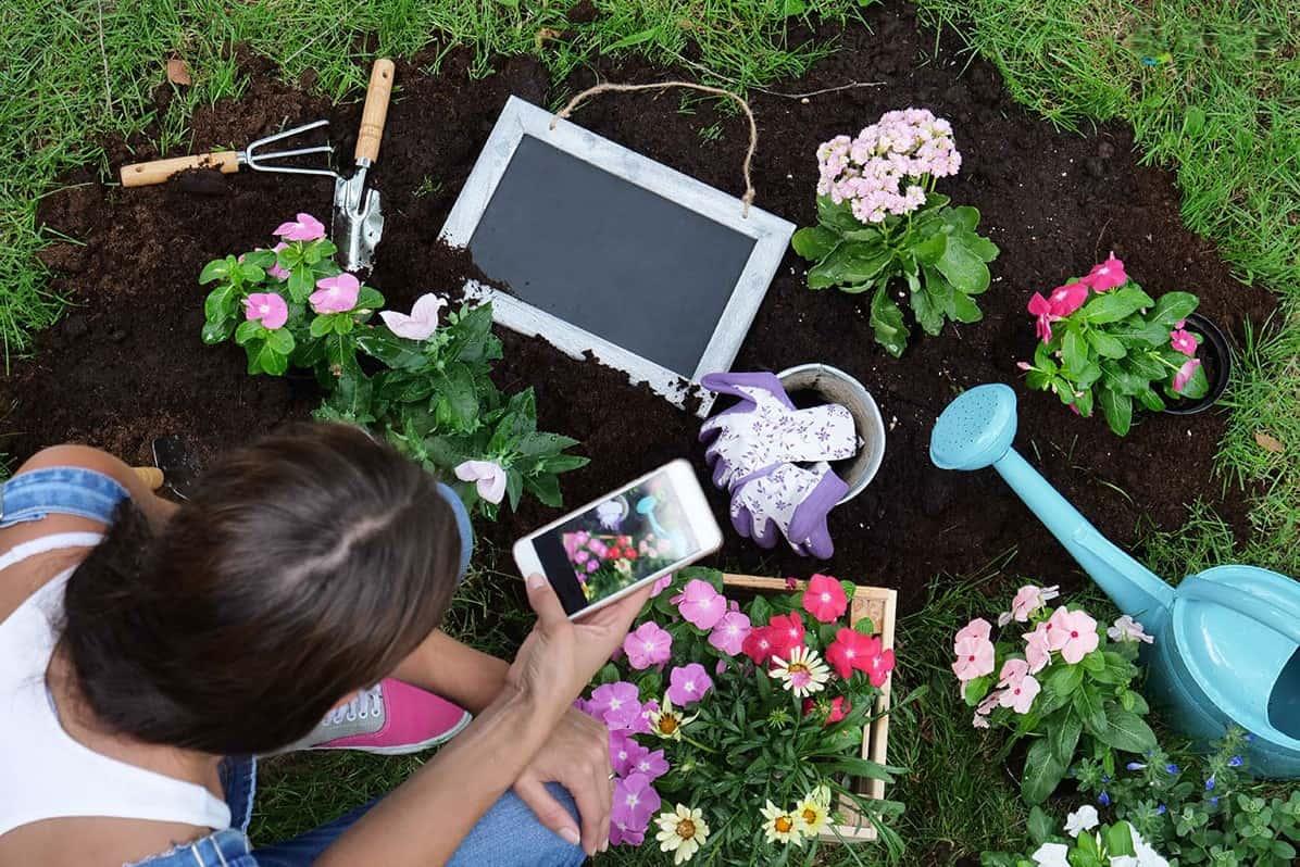تطبيقات زراعية تطبيقات زراعة الانسجة النباتية تطبيقات الزراعة الذكية تطبيقات زراعية للايفون تطبيقات زراعية اندرويد تطبيقات زراعة الانسجة تطبيقات الزراعة تطبيق الزراعة تطبيق زراعة التطبيقات الزراعية للكثافة النسبية التطبيقات الزراعية للتكنولوجيا التطبيقات الزراعية للتكاثر اللاجنسي الصف السادس التطبيقات الزراعية للتكاثر اللاجنسي عند النباتات الزهرية تطبيقات عن الزراعة