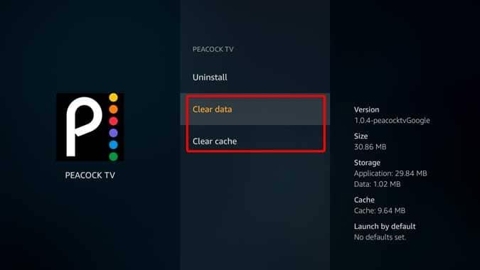 كيفية الوصول إلى Peacock TV على Firestick خارج الولايات المتحدة - Fire TV Stick