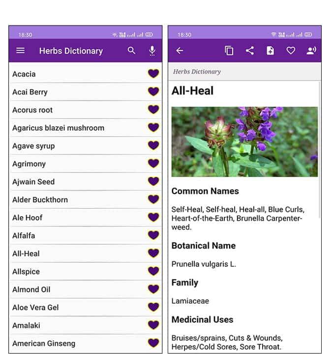 أفضل التطبيقات لمحبي الطبيعة لأجهزة iOS و Android - Android iOS