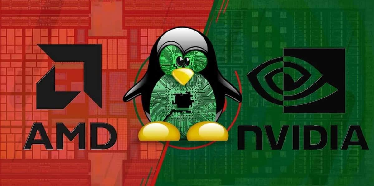 Comparaison des cartes graphiques AMD vs NVIDIA sous Linux : lesquelles devriez-vous utiliser ? -Linux