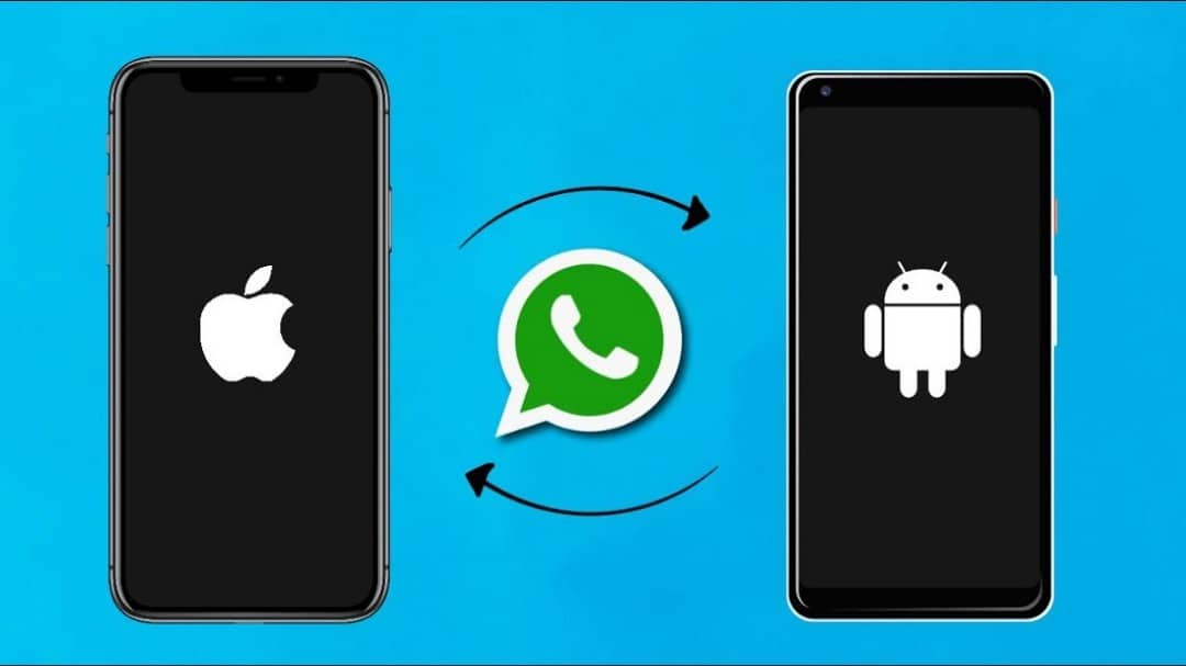 Comment transférer WhatsApp d'iPhone vers Android - Android iOS Whatsapp