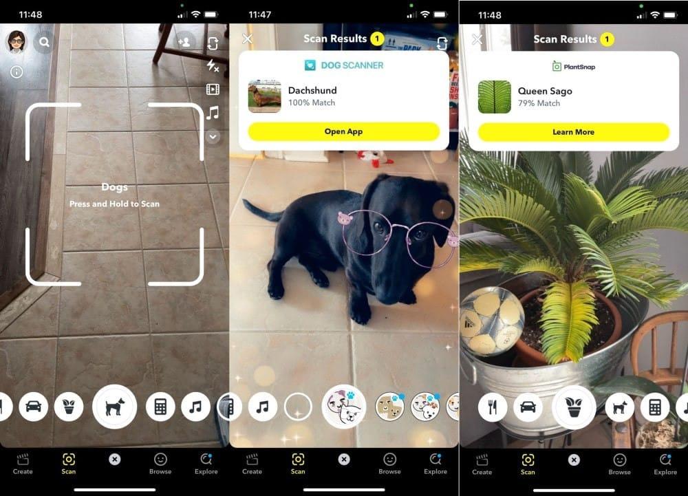 أفضل التطبيقات لتحديد والتعرف على أي شيء باستخدام كاميراهاتفك