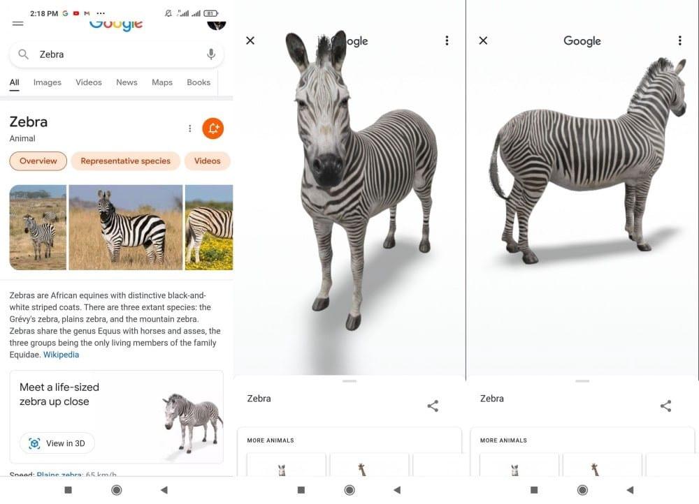 الحيوانات ثلاثية الأبعاد من Google: كيفية تحويل جهازك إلى حديقة سفاريافتراضية